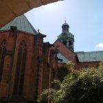 Tausendjähriger-Rosenstock-Hildesheim